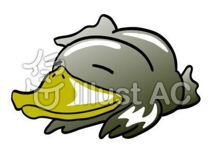 platypusのイラスト