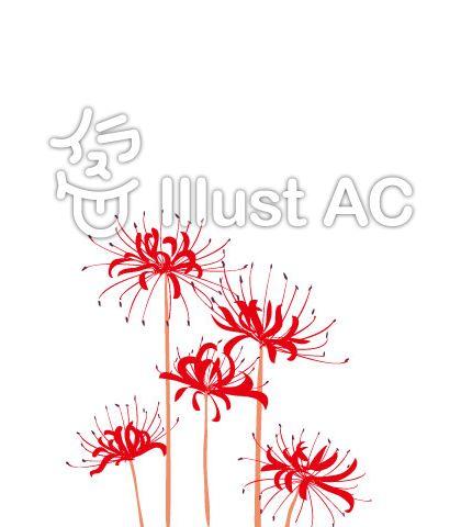 赤い彼岸花のスマホサイズイラスト No 6 無料イラストなら イラストac