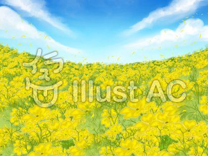 黄色いお花畑のイラスト