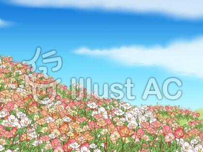ポピーの花畑のイラスト