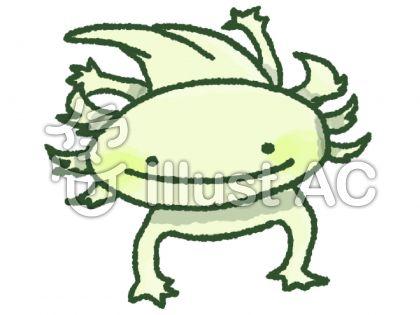 ウーパールーパー(黄緑)