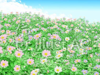 都忘れの花畑のイラスト