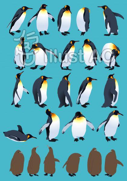 キングペンギンのイラスト