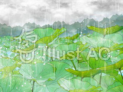 雨に濡れる蓮葉のイラスト