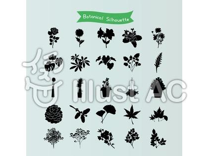 植物のシルエット