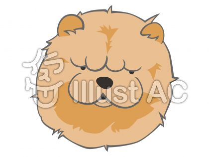 犬フェイス・チャウチャウ