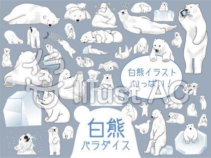 シロクマの生態のイラスト