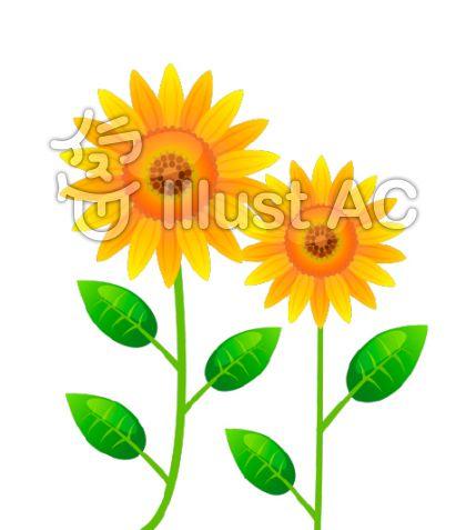向日葵のイラストのイラスト