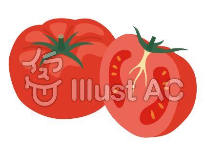 トマト断面イラスト 無料イラストなら イラストac